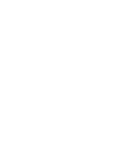 AES-ws